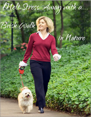 Reducing Cortisol Levels by Walking in Nature
