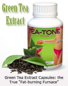 Quick Weight Loss Supplements: Green Tea Extract