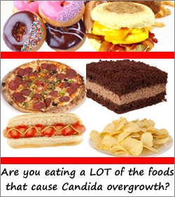 Common Foods that Cause Candida Overgrowth