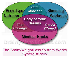 The Best Weight Loss System Has Synergy